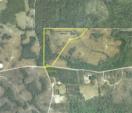 Photo of Fire Break 21 Road, Telogia, FL 32360